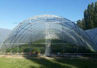 Přední strana skleníku - trapézový a vlnitý polykarbonát